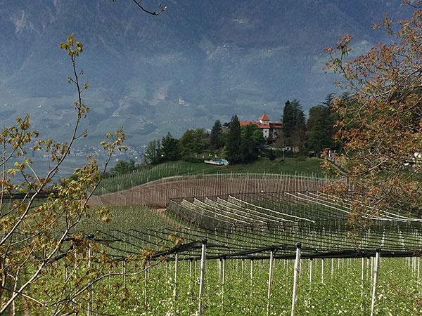 castel-fragsburg-meran-foto-exklusiv-muenchen