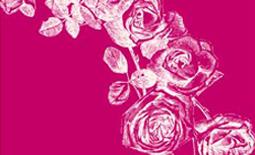 Amerikas beliebteste Hochzeitskarten Designerin Lisa 'Ceci' Johnson eröffnet in Gmund die Wedding-Saison