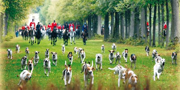 Historische Jagd und exklusive Kutschengala im Schlosspark Oberschleißheim
