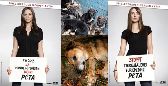 Jetzt werden Fußballerfrauen gegen Hundemassaker aktiv
