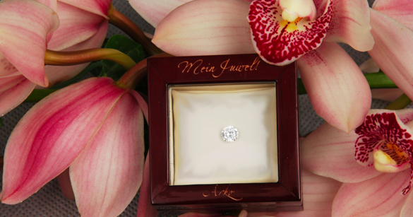Exklusivste Tierbestattung: Ab 2.500 € für einen Diamant