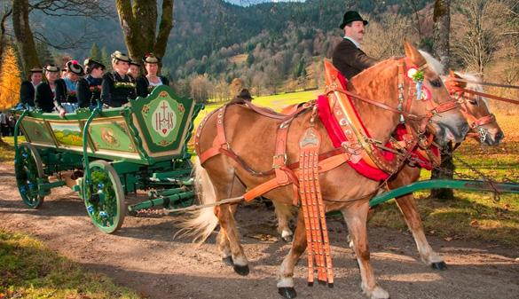 Brauchtum: Älteste Leonhardi-Wallfahrt Bayerns am Tegernsee