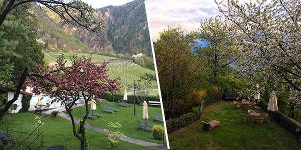 Castel-Fragsburg-Gartenanlage