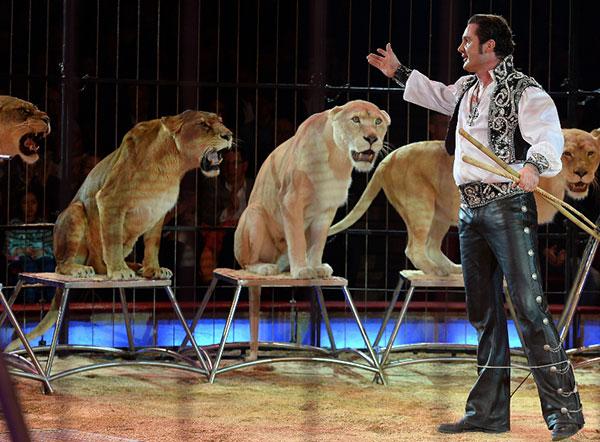 XMAS-Familienausflug der VIPs in den Circus Krone!