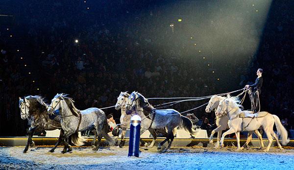 Promi-Aufgalopp bei der Pferdeshow 'Apassionata' in der Olympiahalle