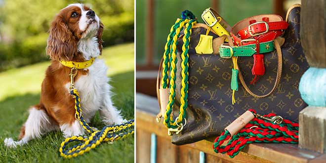 Hundeaccessoires en vogue: 'Dogs in Style' im Interview