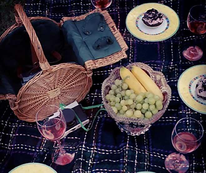 Perfektes-Picknick