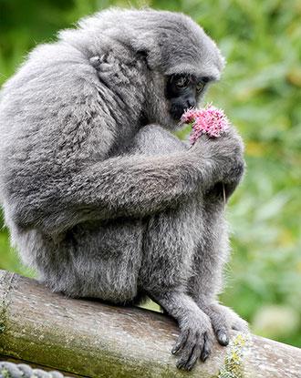 Singletreff im Tierpark Hellabrunn