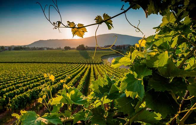 Franciacorta: Die nord-italienische Schaumweinregion