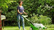 Perfekter Rasen: Top 5 der Rasenmythen