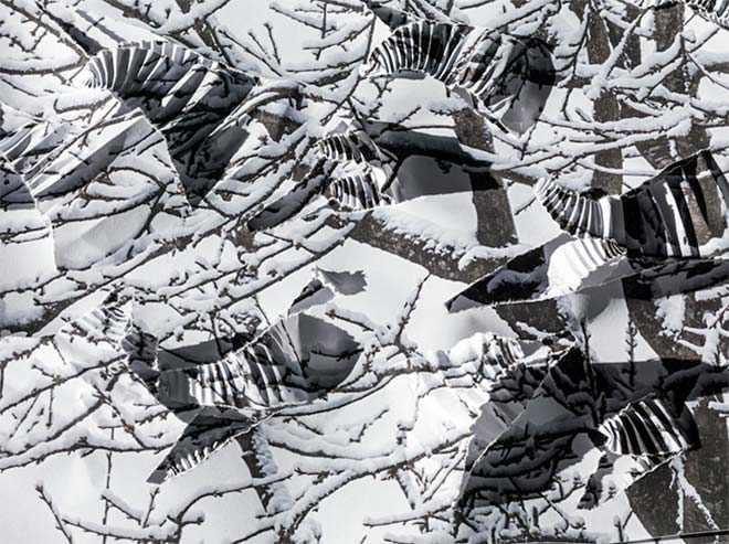 Neun Doppelseiten widmet Hamm seinem Winterbaum im Buch.