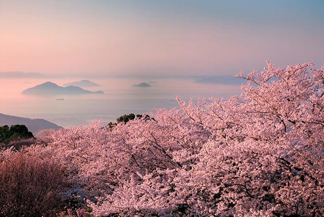 Hervorragende Aussicht über die Seto-Inland Sea. Hier liegt die Kaninchen Insel in Japan. Fotocredit: Setouchi Tourism Authority