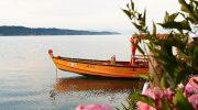 Picknick auf dem See: Das sollte man diesen Sommer nicht verpassen!