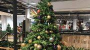 Münchner Traditionshäuser im Geschenke-Check
