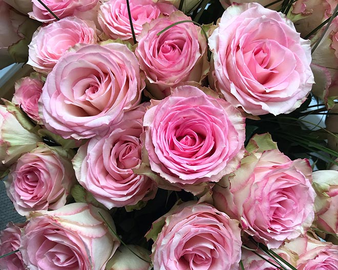 Blumen sind Frauengeschenke sind natürlich perfekt, aber leider zu schnell vergänglich!