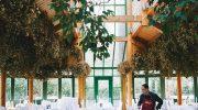 Wirtshaus am Rosengarten holt 2020 vier Sterneköche an Bord
