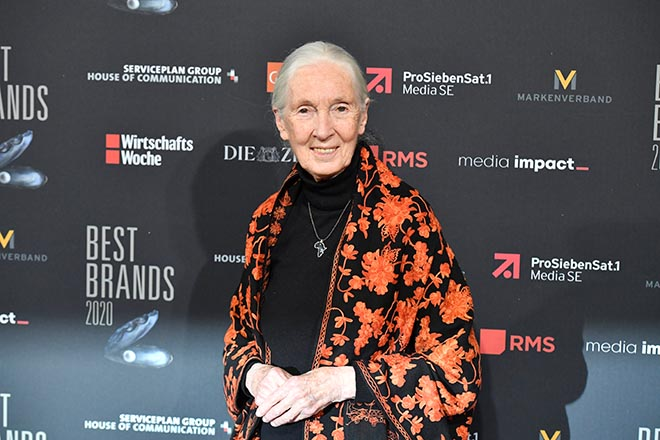 Jane Goodall sorgte für 'Green Glamour' in München. Fotocredit: BrauerPhotos, G.Nitschke
