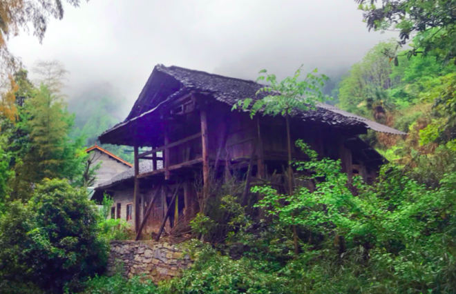 Der Ursprung der kräftigen Pflanzen des Shufeng Jiedu: Eine Landapotheke in den tiefen Bergen nahe Sangzhi, Provinz Hunan in Südchina in der die Rezeptur des Tujia-Volks seit Jahrzehnten bewahrt wurde.