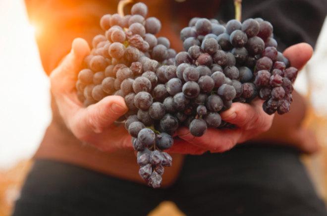 """2021 verleiht Gaggenau zum ersten Mal die Auszeichnung """"Respected by Gaggenau"""" in den Kategorien Kulinarik, Weinkultur und Design. Im November 2021 stehen die drei Gewinner fest!"""