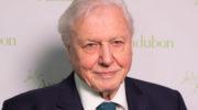 Naturforscher David Attenborough mit bahnbrechender Umwelt-Doku
