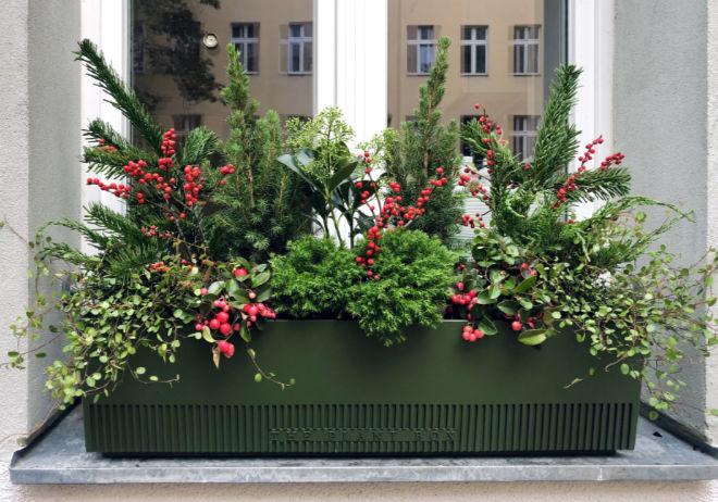Der 'Classic Christmas' Refill von The Plant Box. Derzeit muss man die Refills noch in seine eigene Blumenbox geben.